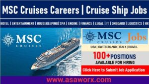 MSC Cruises Jobs Opportunities in Entry-Level & Professional Positions