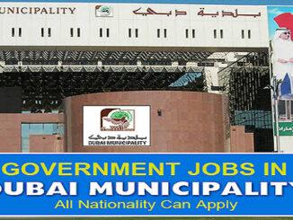 Dubai Municipality Careers Latest Openings